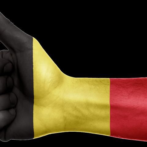 Bron: https://pixabay.com/en/belgium-flag-hand-national-fingers-990428/